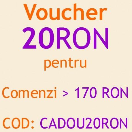 Reducere 20 RON la comanda mancare gatita la oala cu livrare in Bucuresti